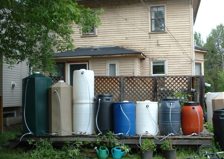 Rain Barrel for Watering Garden