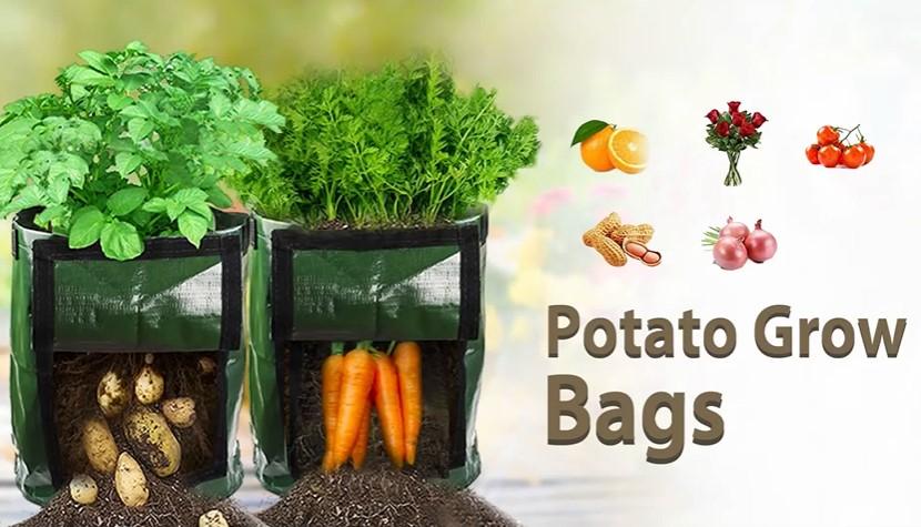 The best potato grow bag