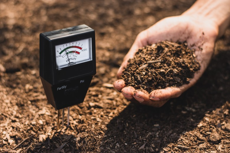 The best soil pH tester for garden and lawn use