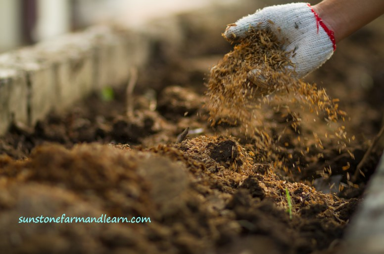 How to prepare soil for planting vegetables?