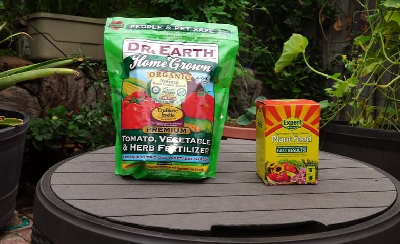 Fertilizer for tomato plants