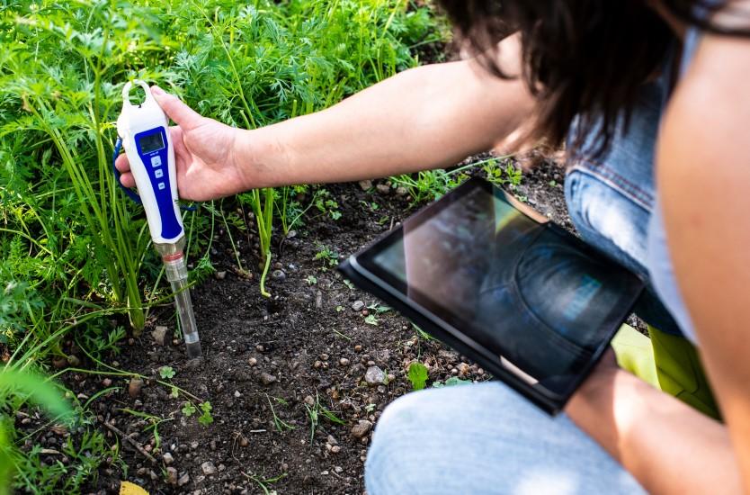 PH meter tester in soil