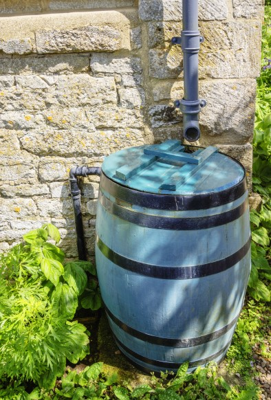 Rain barrel with cover