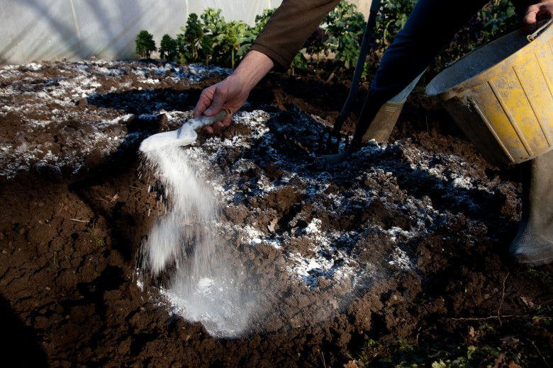 How to Apply Lime to Your Garden