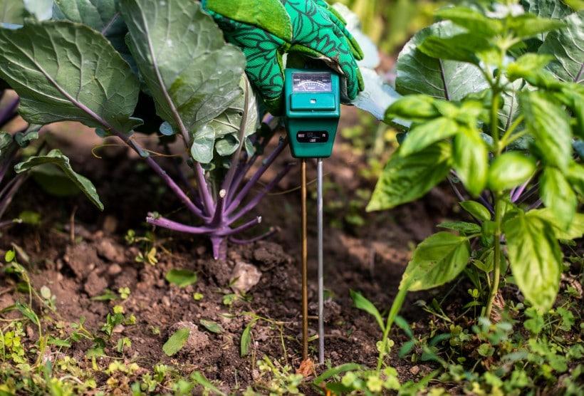 Using the best soil test kit for the garden soil