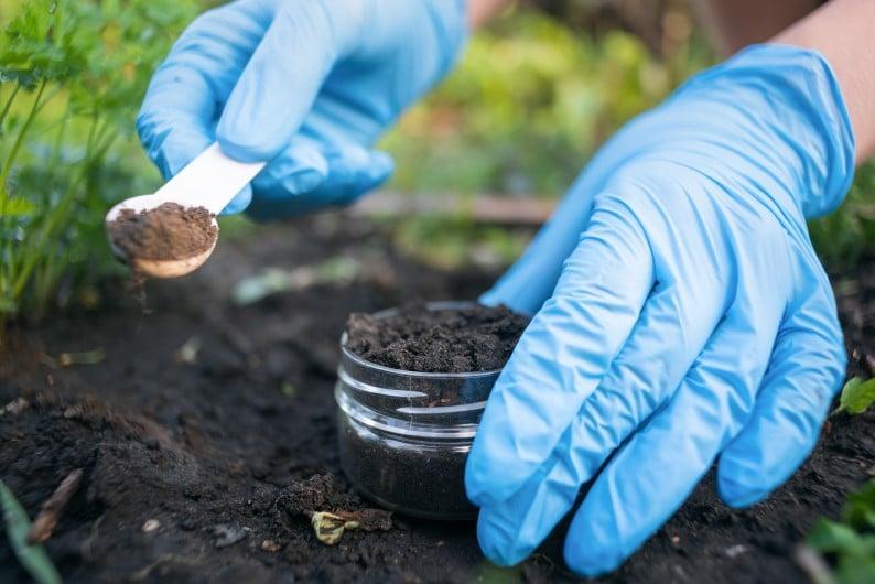 taking a soil sample for testing